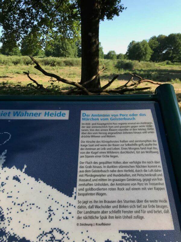 Geisterbusch - Wahner Heide